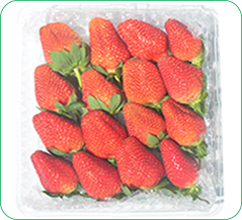 454-gram-strawberry-1.png