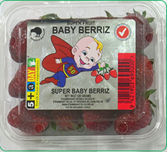 baby-berry1.png